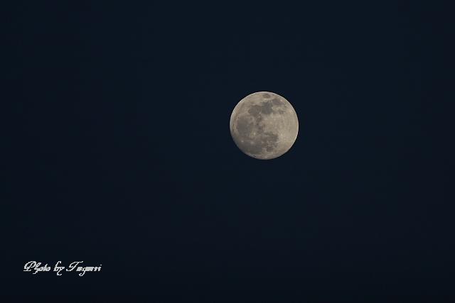 満月の夜_f0037633_22203183.jpg