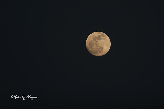 満月の夜_f0037633_22203963.jpg