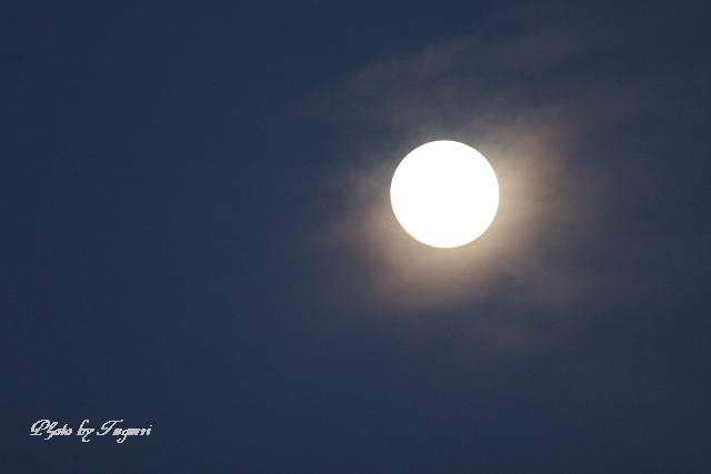 満月の夜_f0037633_22204714.jpg