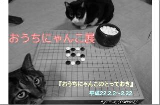第5回おうちにゃんこ展_d0096837_727413.jpg