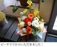 b0166538_16284188.jpg