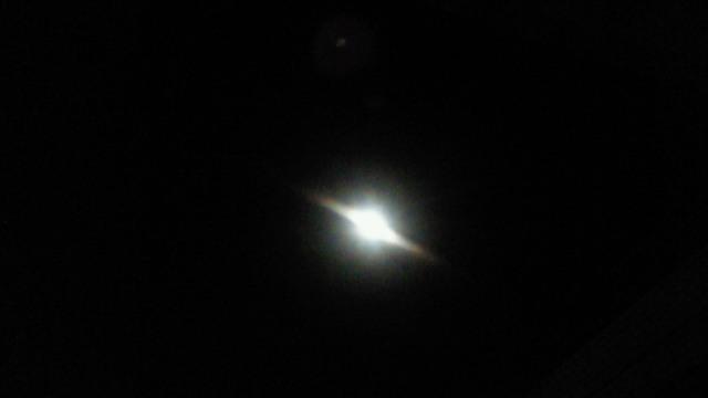 Moon Glow_d0038951_2534679.jpg