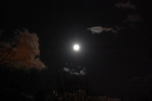 極寒のNY。満月が綺麗だった。_f0088456_23332920.jpg
