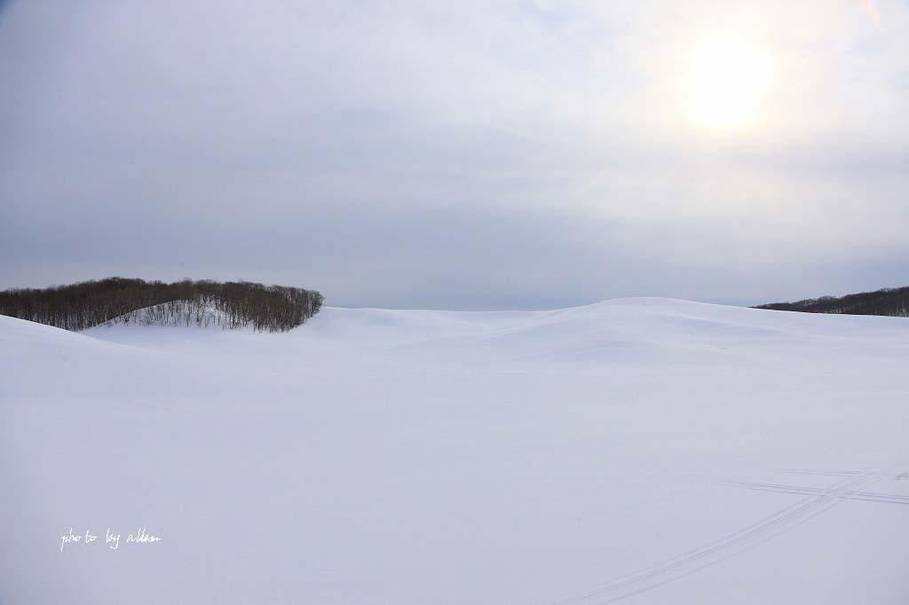 青空と樹氷より~_a0039860_18423779.jpg