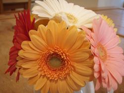花のある空間_f0164662_8461364.jpg
