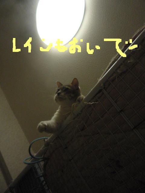 b0112380_1931111.jpg