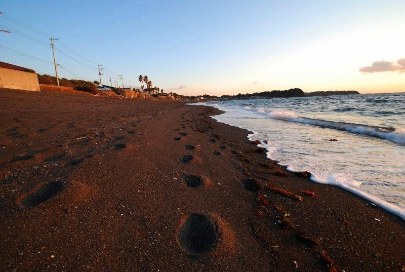 Chocolate sand beach_d0065116_2185731.jpg