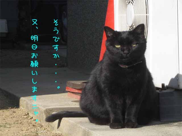 ☆まねきねこ☆_c0205323_11254552.jpg