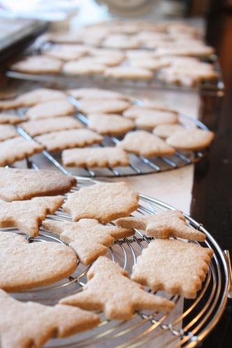 12月 クリスマス・スパイスクッキー_b0189057_12105166.jpg