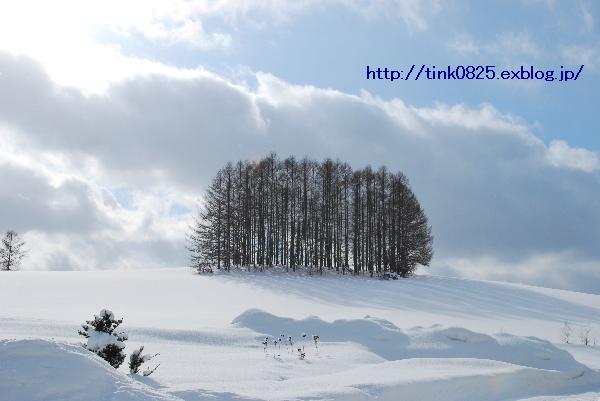 a0105160_22135180.jpg