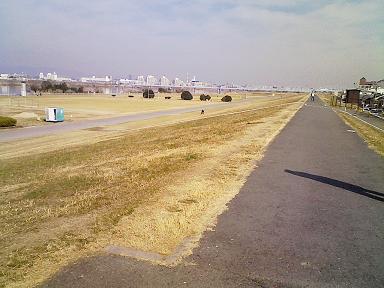 大阪ハーフマラソン_f0202682_1129930.jpg