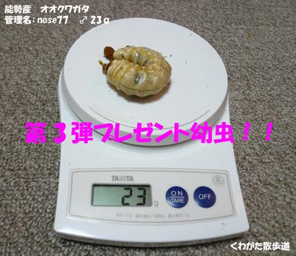 f0183484_1350236.jpg
