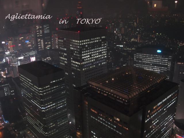 イタリア人・・・東京散策編_c0179785_7195550.jpg