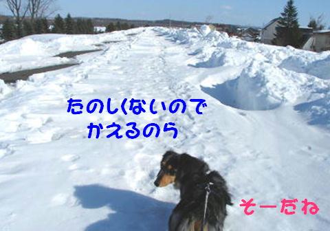 f0195891_1721814.jpg