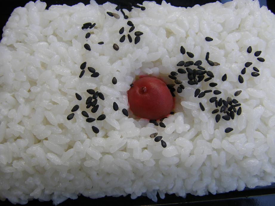 ぐるメール淡路店のハンバーグ弁当とエースコックの坦々麺_c0118393_9355522.jpg
