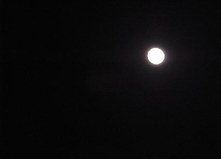 輝く月_b0105897_2163362.jpg