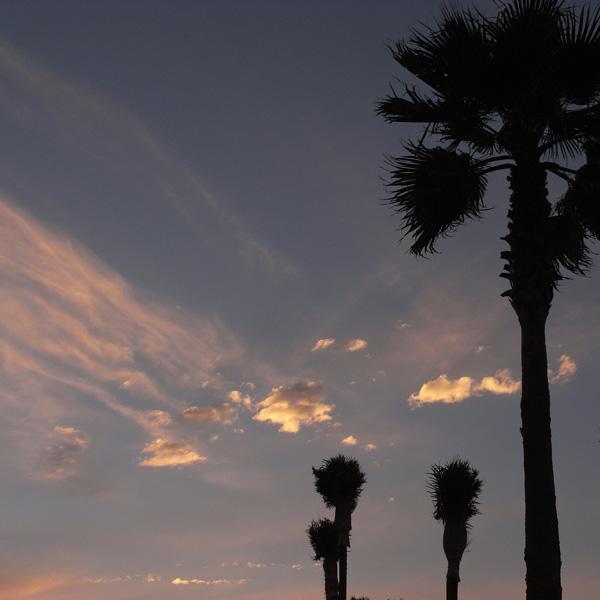 空を見ろっ! by GX100_c0049299_20121431.jpg