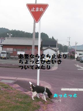 d0104209_15575319.jpg