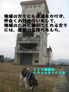 d0104209_16102478.jpg