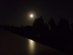-月光-_f0135515_9192983.jpg