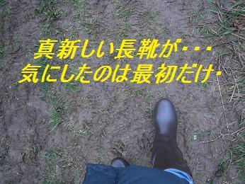 b0129725_033489.jpg