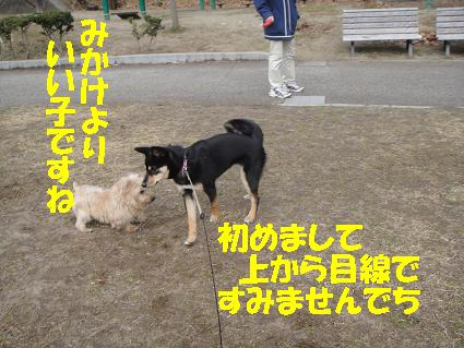 c0211642_172363.jpg