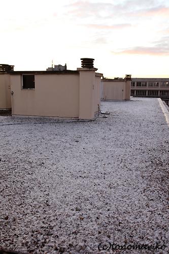 うっすら雪が積もりました_c0024345_443376.jpg