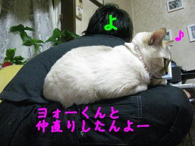 b0151748_22132431.jpg