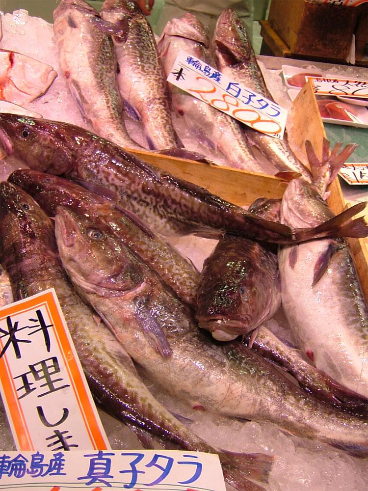 タラ!!!歴史的な大漁!!_c0110051_042431.jpg