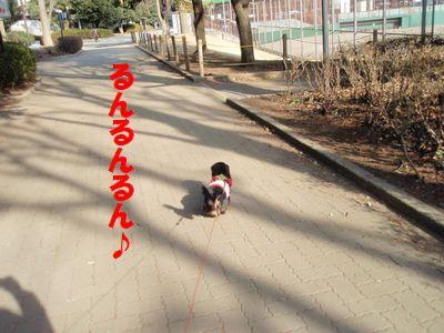 c0151866_20151514.jpg
