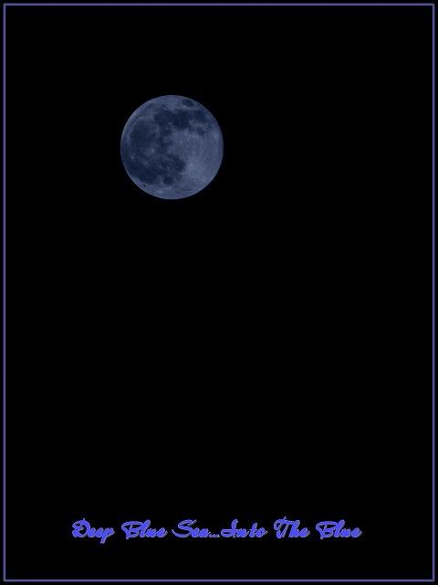 f0202803_058437.jpg