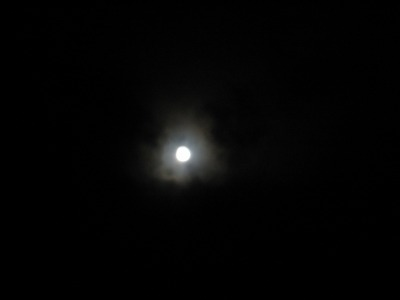 Blue Moon _b0106609_2291389.jpg