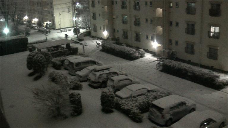 東京に雪が積もり始めました_f0153529_2339450.jpg