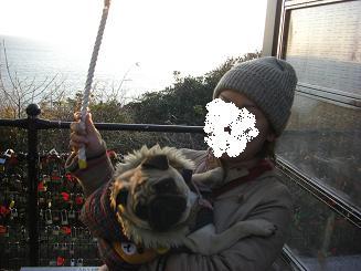 江ノ島_a0159640_225212.jpg