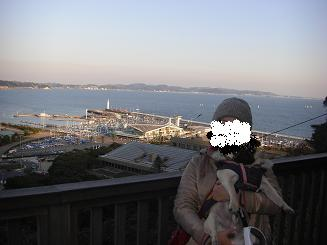江ノ島_a0159640_2275284.jpg