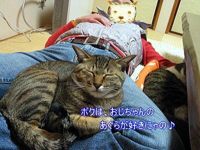 b0097848_1837718.jpg