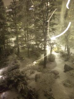 雪だ_c0207861_23125864.jpg