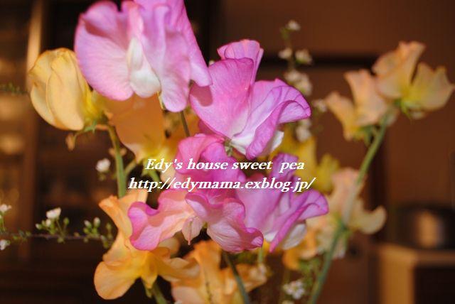f0157373_2157646.jpg