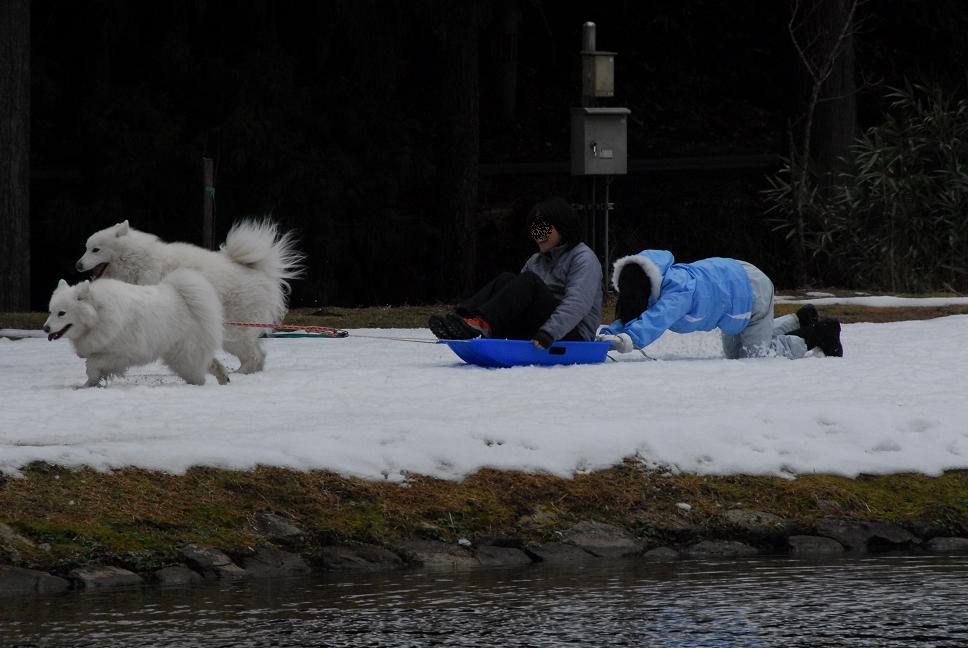 行ってきました! 好規格キャンプ場 冬季編 part2_a0049296_21134215.jpg