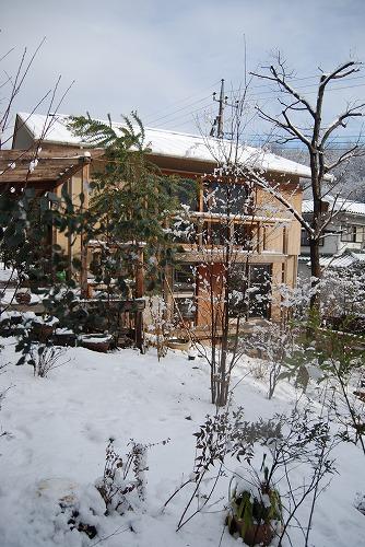 雪あがりの朝…_c0124100_1225257.jpg