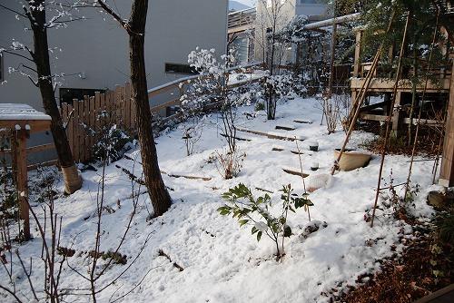 雪あがりの朝…_c0124100_12272064.jpg