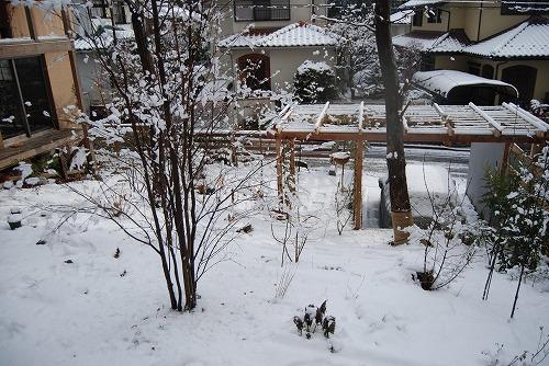 雪あがりの朝…_c0124100_12283582.jpg