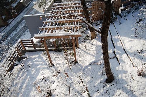 雪あがりの朝…_c0124100_122844.jpg