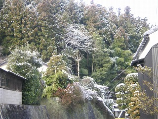 2月2日 雪景色/田村編_a0131903_10182334.jpg