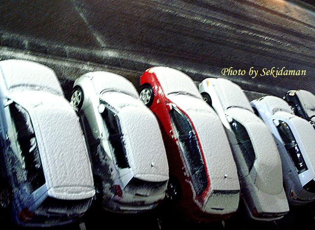 Snow Paints_b0189104_0342156.jpg