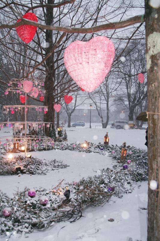 バレンタインの始まりは、久しぶりの雪_f0091207_0215673.jpg
