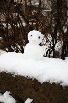 初雪_f0208315_10331150.jpg
