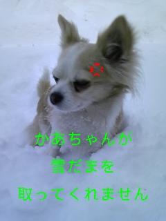f0148927_18565562.jpg
