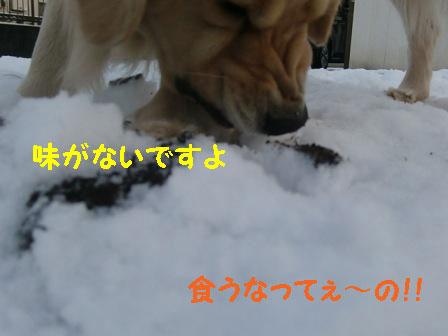 f0176830_2243146.jpg
