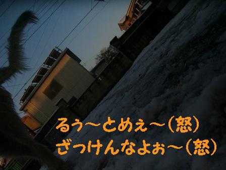 f0176830_23148100.jpg